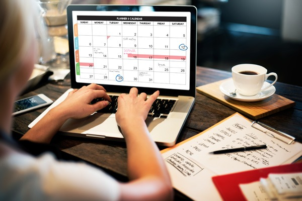 holiday home bookings calendar